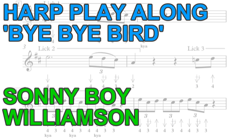 Harmonica Play Along: Bye bye bird + free harp tab